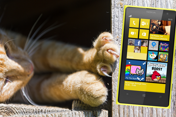 Nokia unveils new cat-ty tweet after discovery cat's paws unlock the iPhone 5s