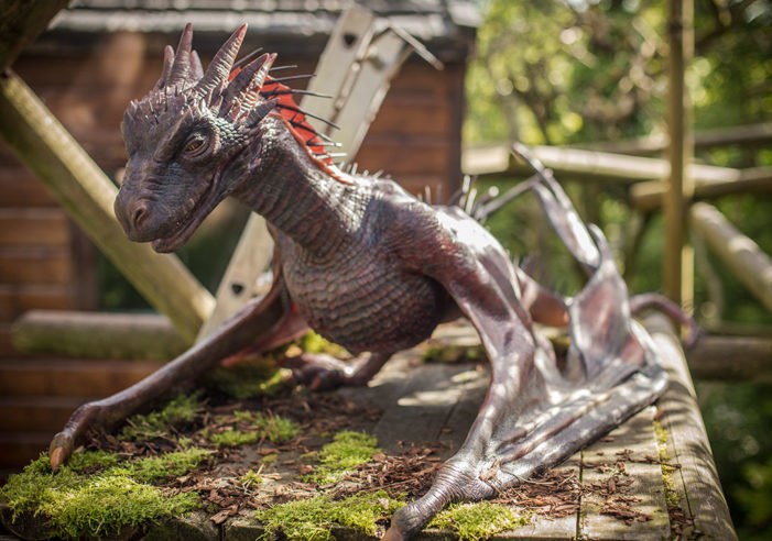 Belfast Zoo takes delivery of critically endangered dragon