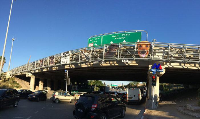 M&C Saatchi Tel Aviv Turns Billboard Construction into Cage for Non-Profit Organization, Herzelia Loves Animals