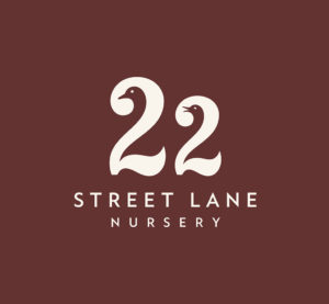 1_22-STREET-LANE-NURSERY_Master-logo_PR-image-RGB