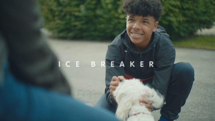 LIDA puts life-enhancing human-pet relationships at the heart of new Blue Cross ad campaign