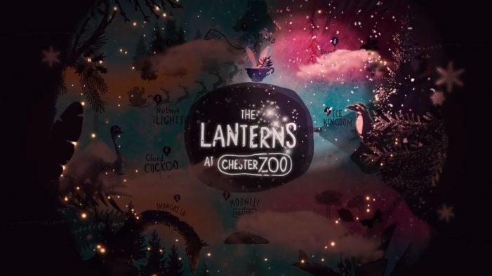 Ultimate roll out a festive TV ad for 2018's 'The Lanterns' at Chester Zoo