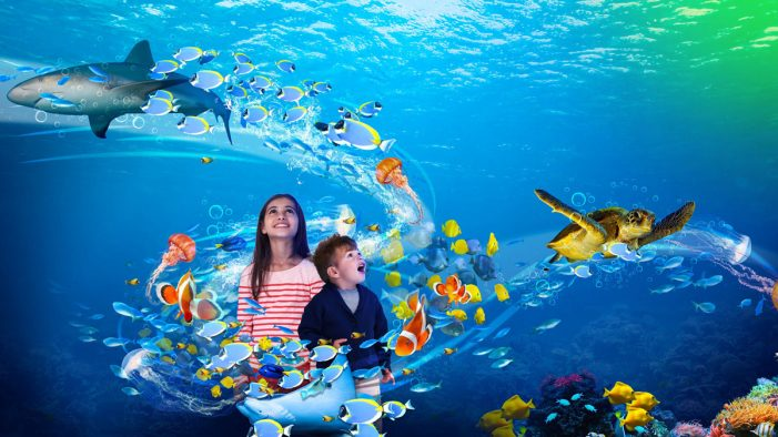 SEA LIFE's new global interactive aquarium experience to be run by Sense