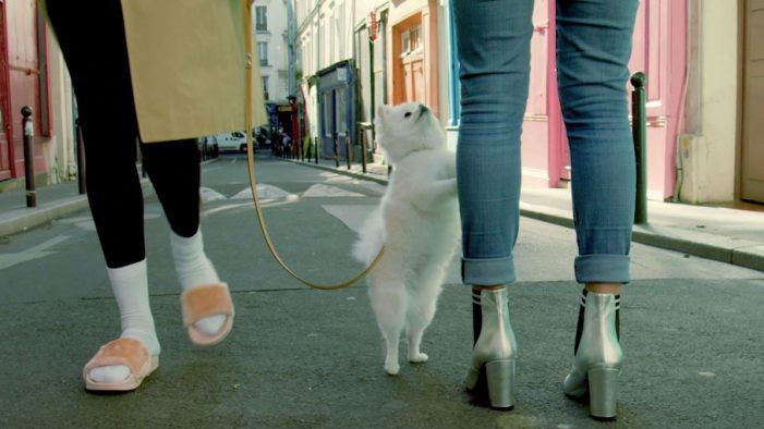 Serviceplan France create humourous digital films for Sarenza 'Boots 2018' collection