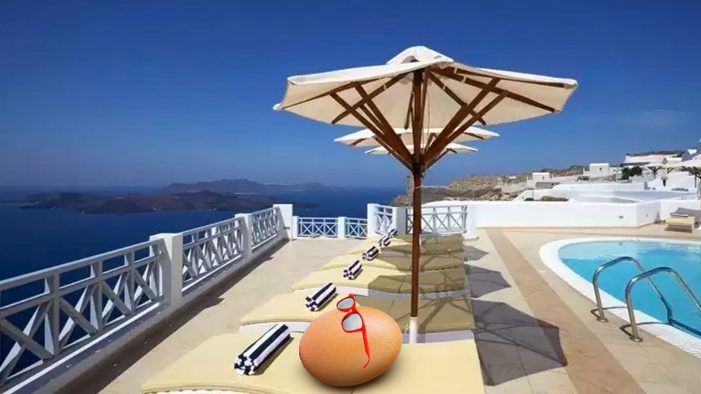 Insta-famous #Egg enjoys the perks of fame and goes on tour with Hotels.com