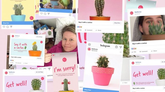 FCB Cape Town and Hellocomputer campaign helps online florist bust the drought