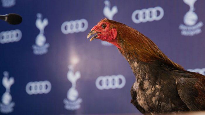 Audi showcases Tottenham Hotspur's new stadium in new partnership spot