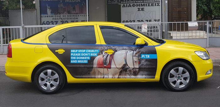 Santorini Donkey-Ride Cruelty Prompts Ad Blitz