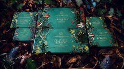 Design Bridge create 'wild and rebellious' new chocolate range for Fortnum & Mason
