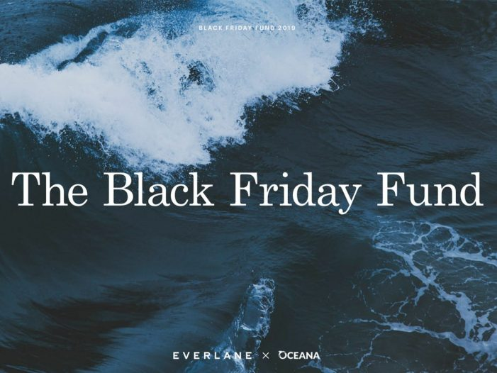 Black Friday Comment from Studio Output |  What big brands can learn from start-ups