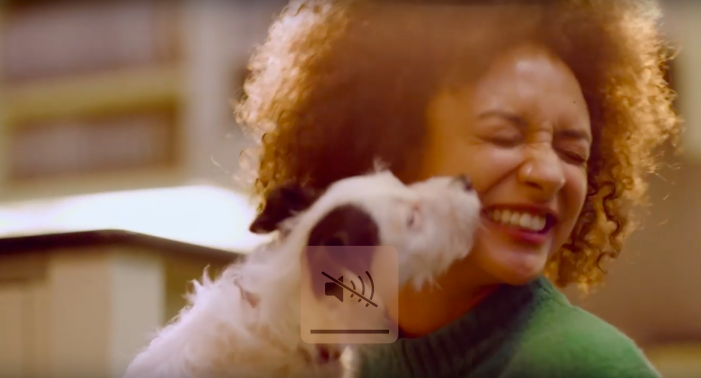 Bought By Many launches 'Love Your Pet Better' campaign as it passes 100,000 pet insurance policyholders