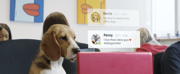 Tech firm sets tails wagging with launch of new B2B 'barketing' campaign