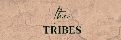 Female Tribes Network (FTNetwork) Launches – A Ground-Breaking New Social Media Platform By Women For Women