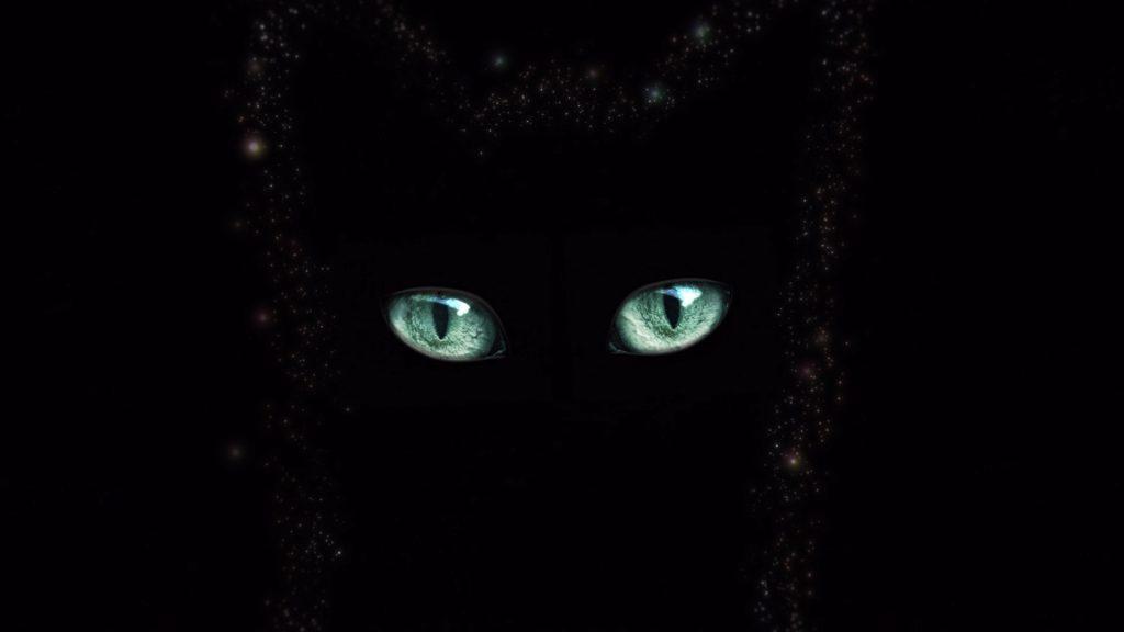 Sheba 4AM Eyes