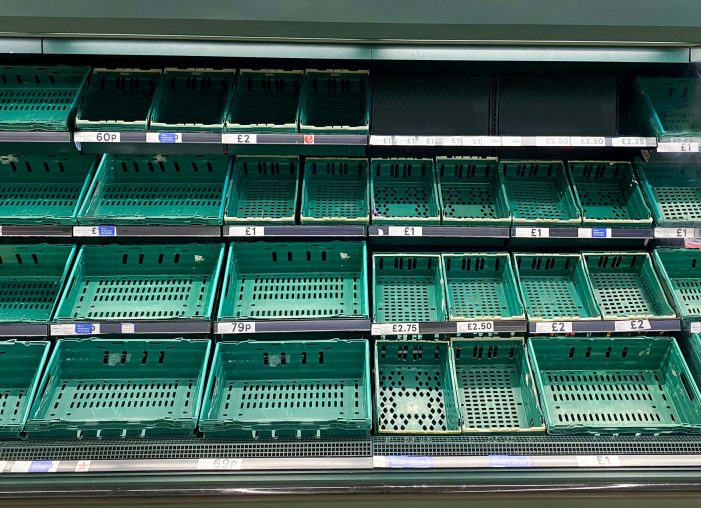There's No Plan Bee: Empty Shop Shelves In A Future Without Bees